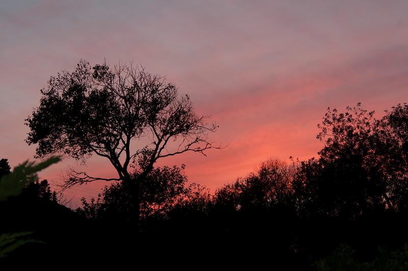 Sunset from Hacienda Carmel