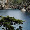 Blue Fish Cove