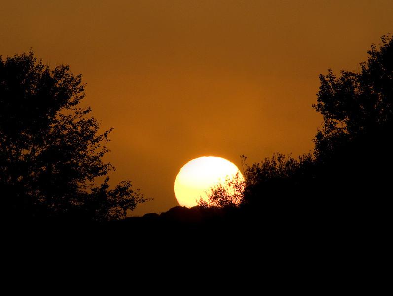 Sunset & Willows