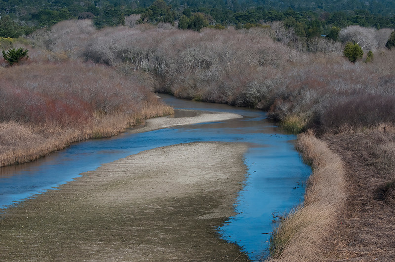 Carmel River Lagoon and Wetlands Natural Preserve