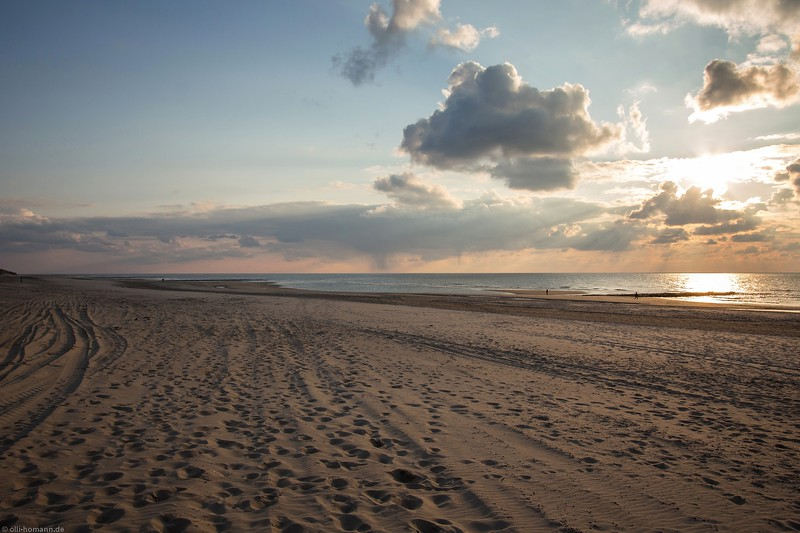 Texel.