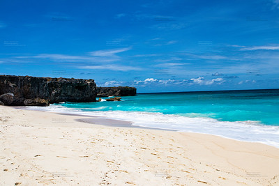 Karibik - Strand - Palmen - Meer