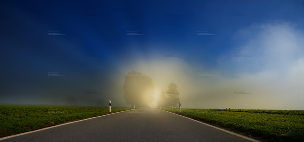 road to the future. Foggy day with road going to the horizon