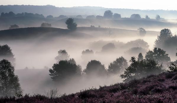 Ground Fog on the Posbank