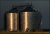 Graansilo's/Grain bins