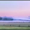 Mist/Fog