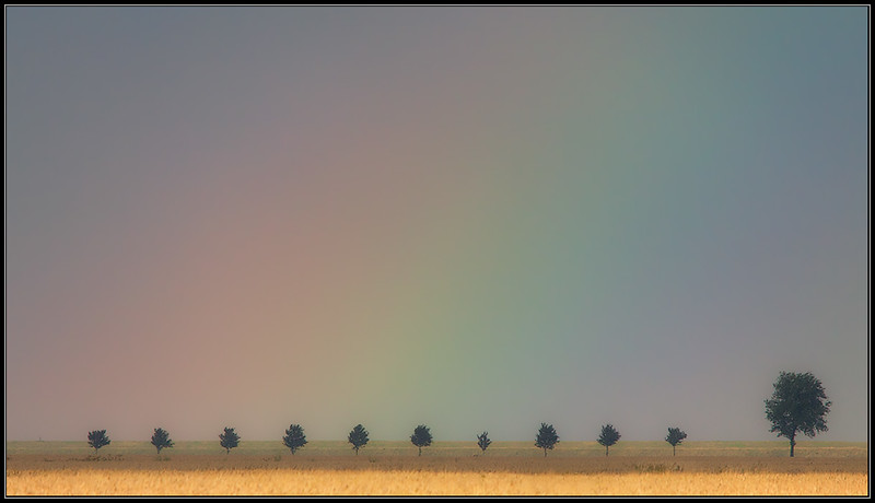 Regenboog/Rainbow