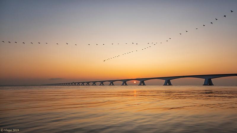 Zonsopkomst aan de Zeelandbrug