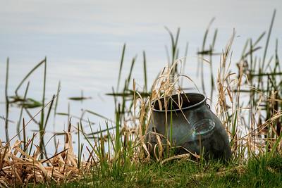 En vand junke ved Ejstrup sø