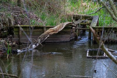 Indhegnet vandområde ved Ejstrup sø