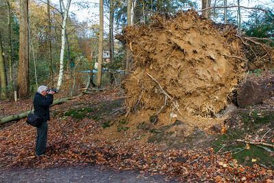 Stormen havde været hård mod træerne omkring Glücksburg Slot