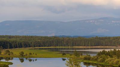 Karlsrudtangen, Ringerike 14.7.2021 Canon EOS R5 + EF 100-400mm f/4.5-5.6L IS II USM @ 153 mm