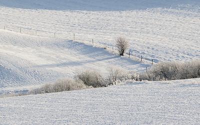 Vinterlandskap Bergsvingen, Øvre Eiker 25.1.2015 Canon 5D Mark II + Tamron 150 - 600 mm 5,0 - 6,3 @ 273 mm