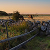 Landskap, Morups tånge<br /> Sverige 23.8.2021<br /> Canon EOS R5 + RF 24-105mm F4L IS USM