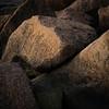 Granittblokker<br /> Lahellholmen, Asker 28.11.2020<br /> Canon 5D Mark IV + EF100mm f/2.8L Macro IS USM