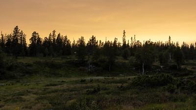 Solnedgang Fulufjell, Sverige 17.7.2021 Canon EOS R5 + RF 24-105mm F4 L IS USM @ 50 mm