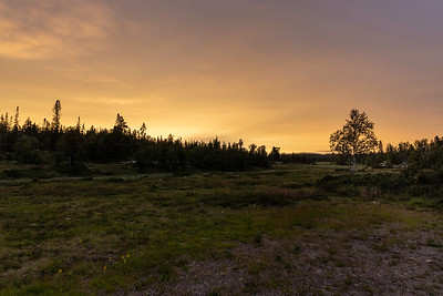 Solnedgang Fulufjell, Sverige 17.7.2021 Canon EOS R5 + RF 24-105mm F4 L IS USM @ 24 mm