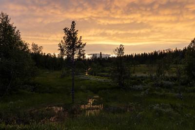 Solnedgang Fulufjell, Sverige 17.7.2021 Canon EOS R5 + RF 24-105mm F4 L IS USM @ 26 mm