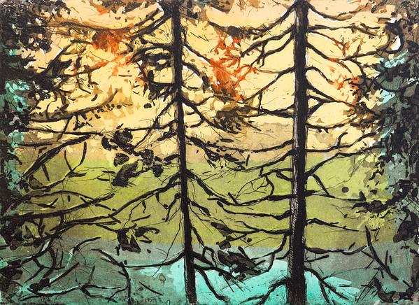 Skogstjern, 2019, 1900,-