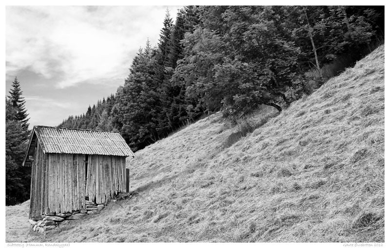Høyonn i Randabygda (Haymaking the traditional way)