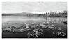 (Lake) Storvatnet, Senja