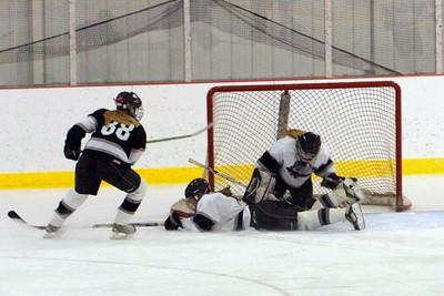 2012-2013 Langdon Girls Hockey