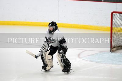 2013-2014 Langdon Girls Hockey