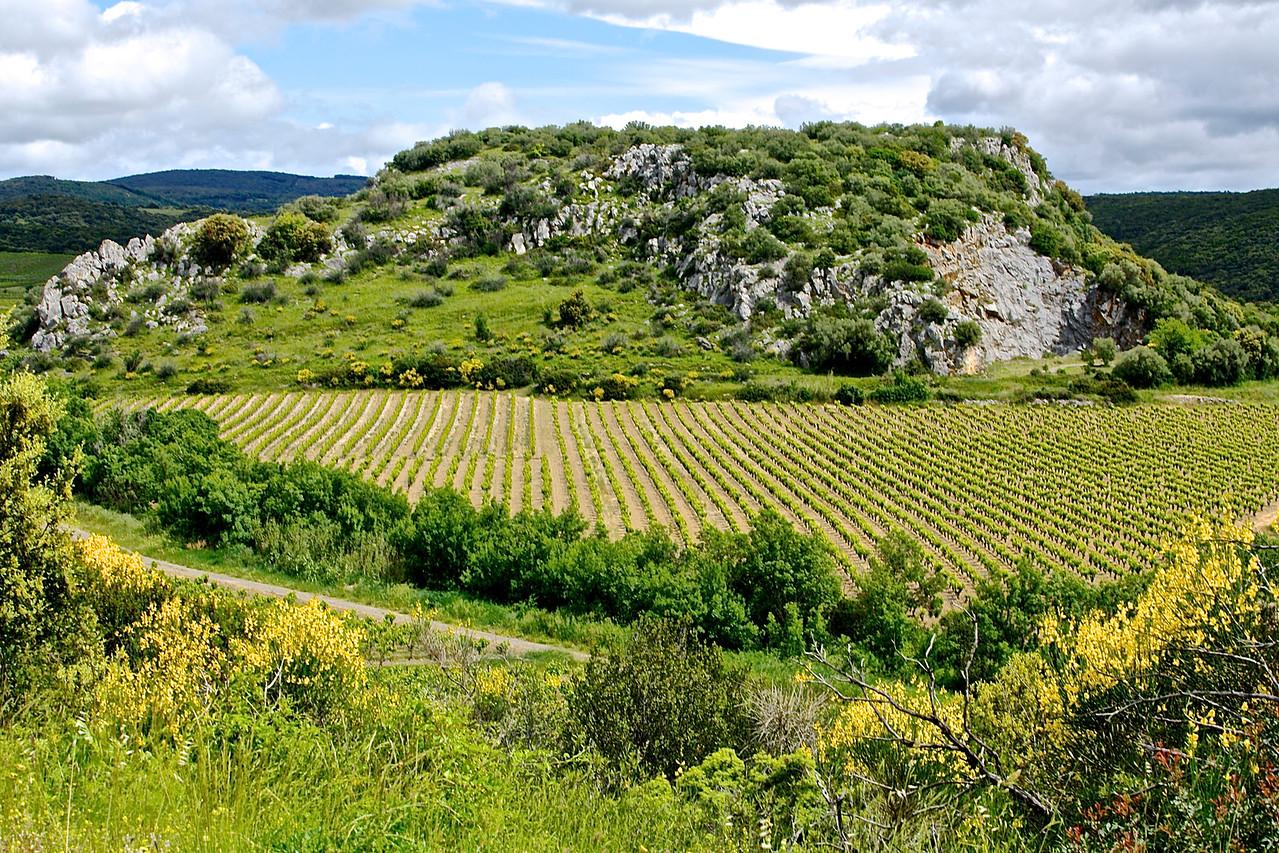 Languedoc Landscape, Near Puissalicon .