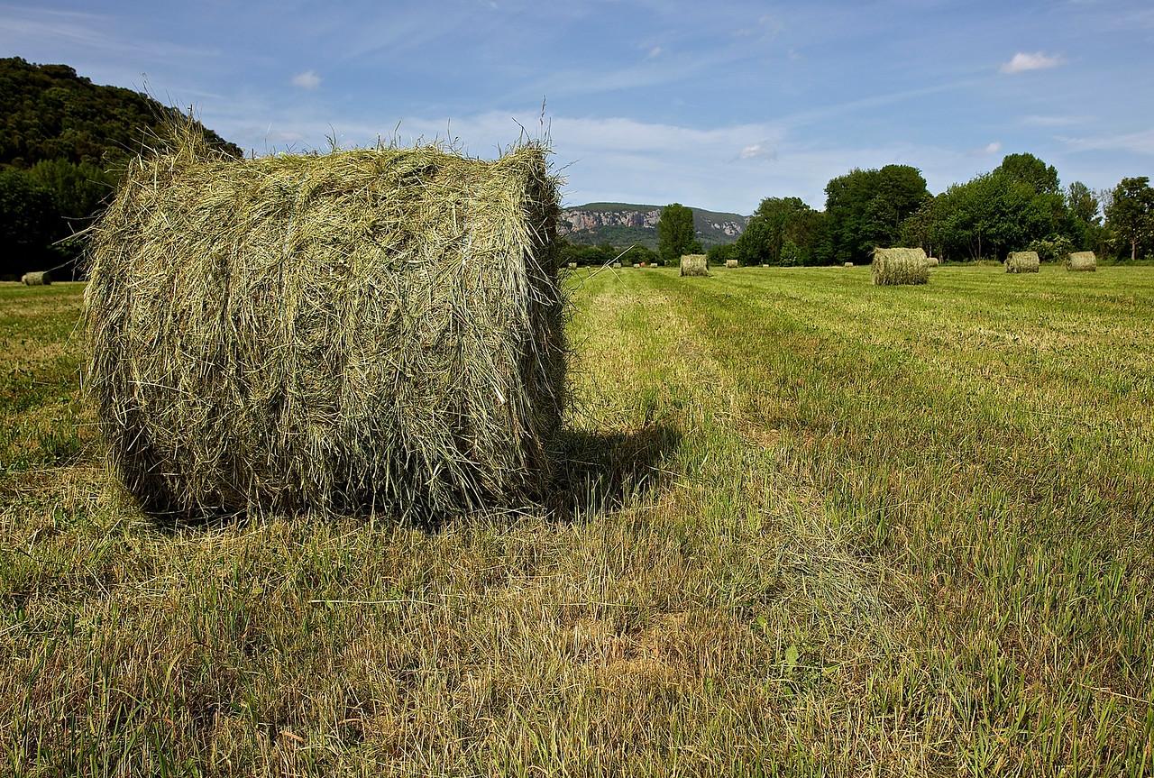 Hay Bales.  Near Saint Saturnin