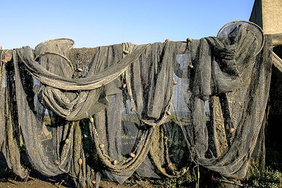 FISHING NETS,HARBOUR,BAGES,LANGUEDOC,FRANCE (1)