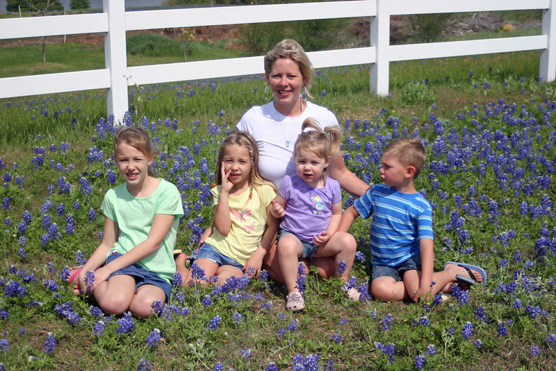 Bluebonets in Chappel Hill