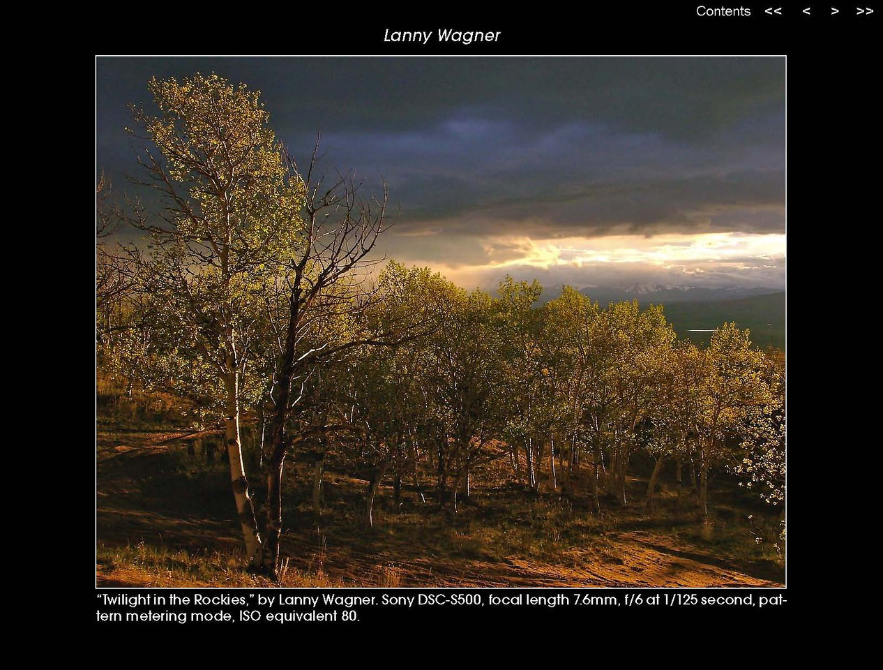 SELECTED AS WINNING IMAGE IN NATURE PHOTOGRAPHY MAGAZINES 2012 APP CONTEST