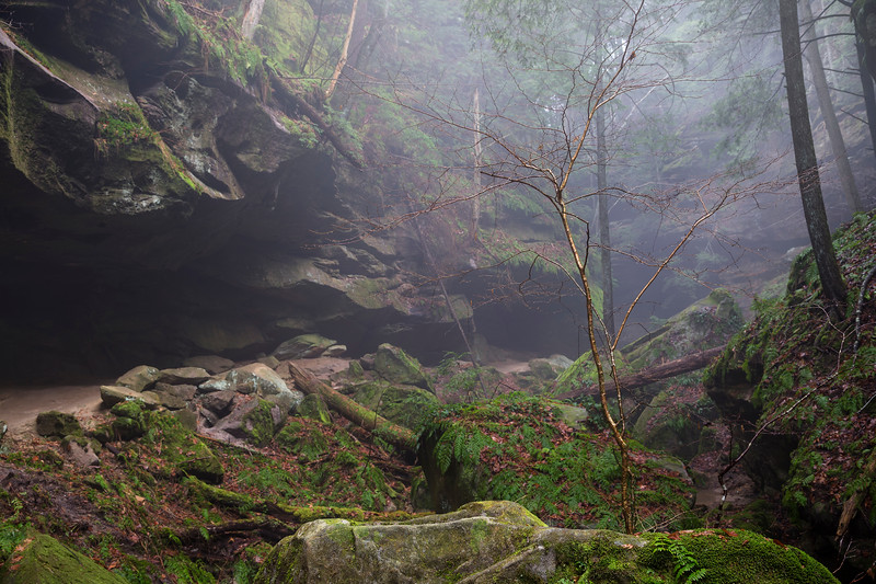Conckles hollow on a foggy day