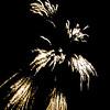 15_Lansdowne_July4_09_148