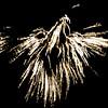 15_Lansdowne_July4_09_147