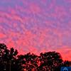 Lansdowne_4th_of_July_2011_281