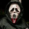 Lansdowne_Halloween2011_113
