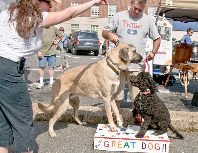 dog_day_2010_079