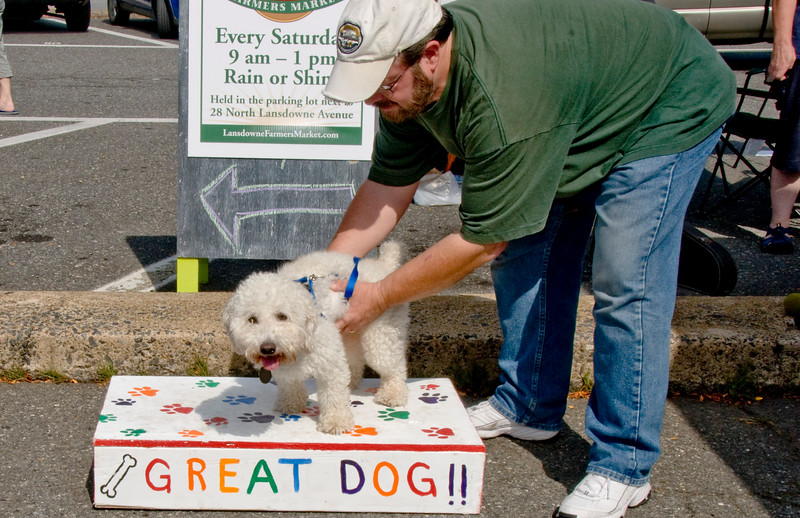 dog_day_2010_081