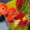 LFM_Oct_30_2010 - 09