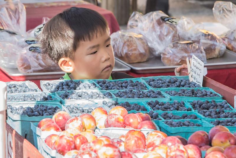 Lansdowne Farmers Market 2015