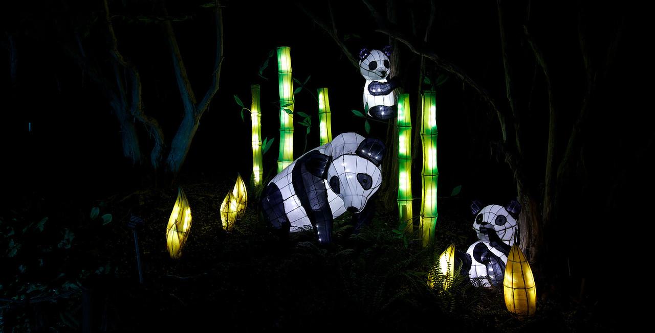 Lanternes chinoises du Jardin chinois au Jardin botanique de Montreal.