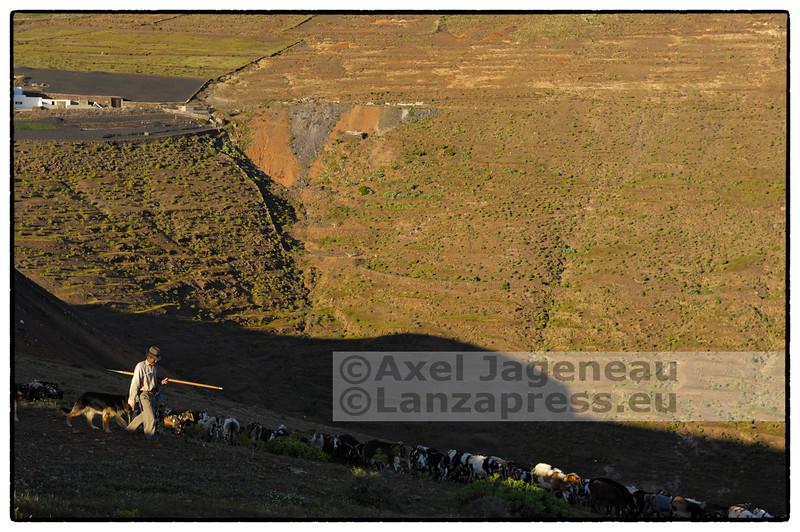 Las Valles - farmer