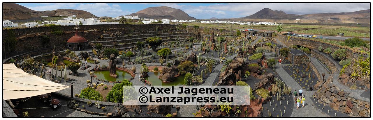 Mala Cactus Garden