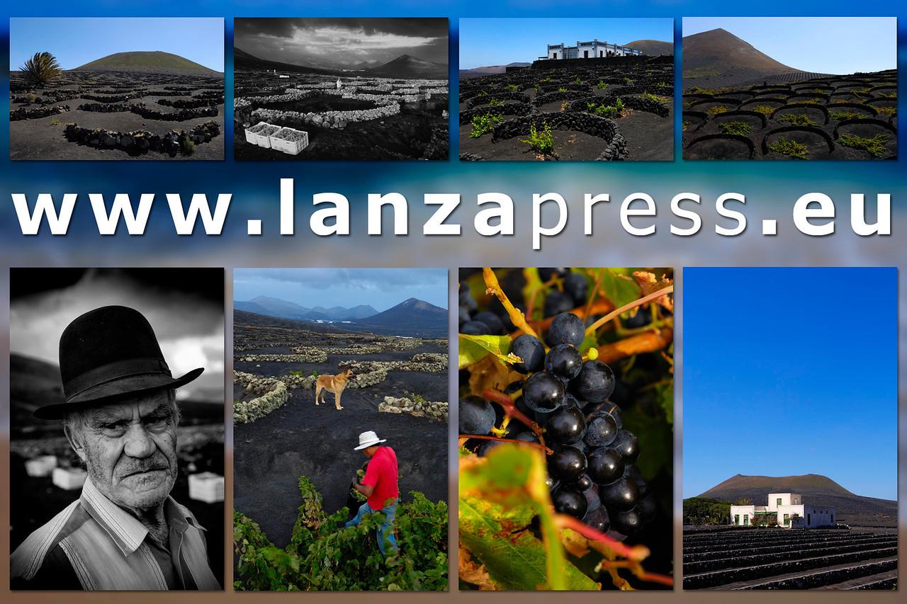 Vino de Lanzarote
