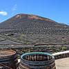 Lanzarote Weinanbaugebiet La Geria