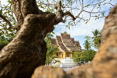 One of 75 temples in Luang Prabang