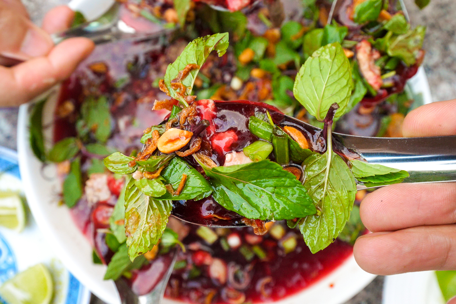 Laos raw duck blood salad