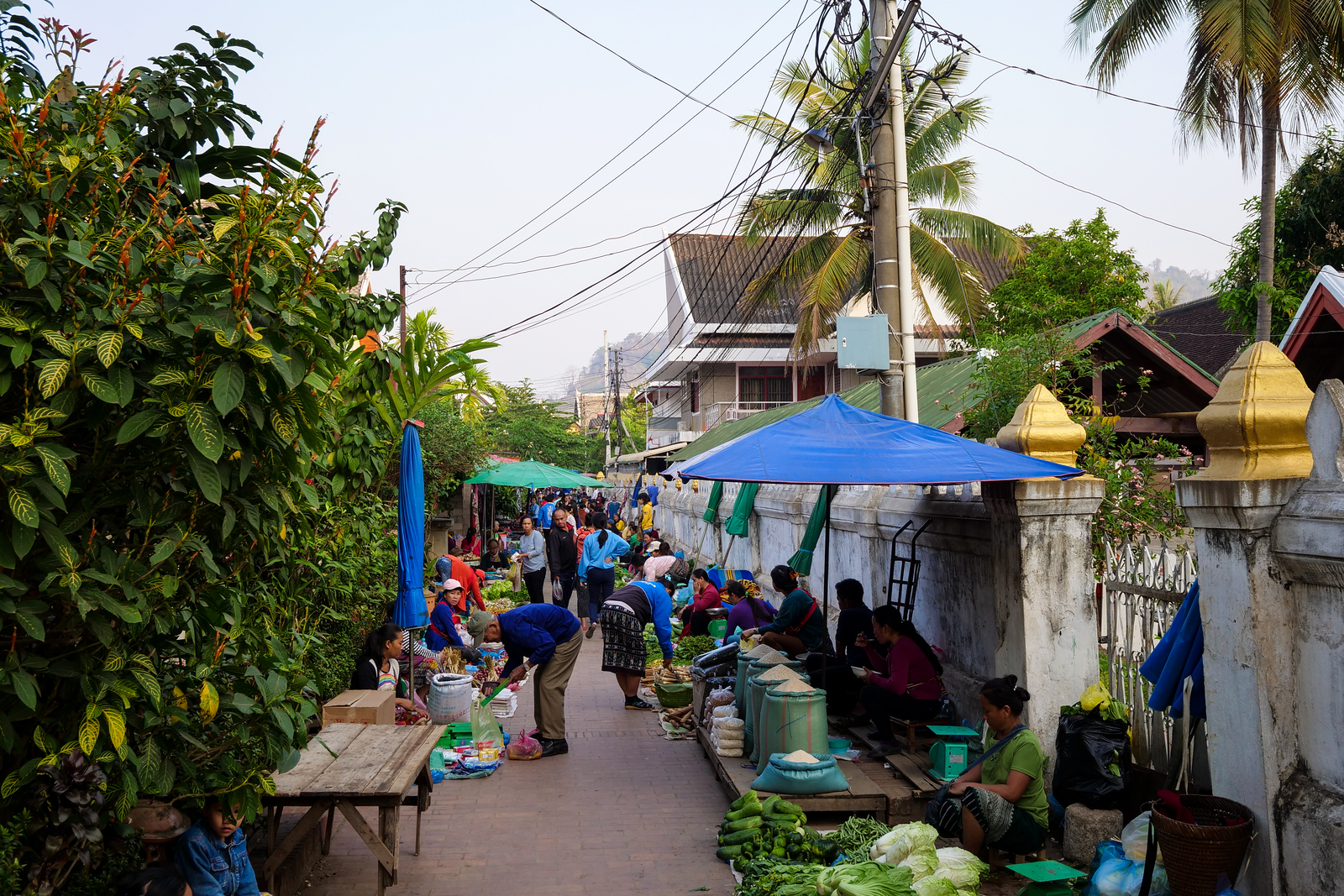 Luang Prabang morning market location