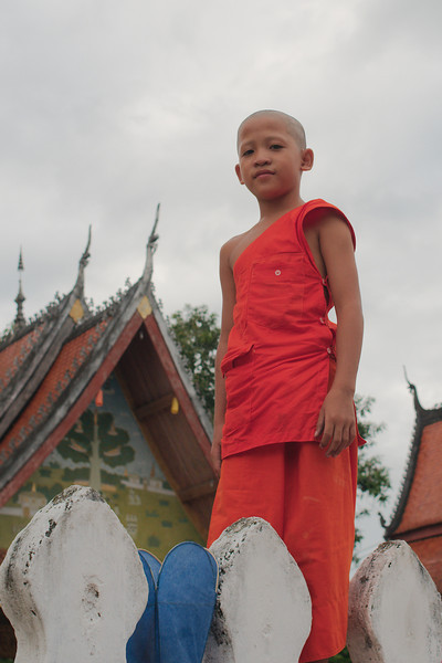 A novice monk stringing lanterns on a wat wall